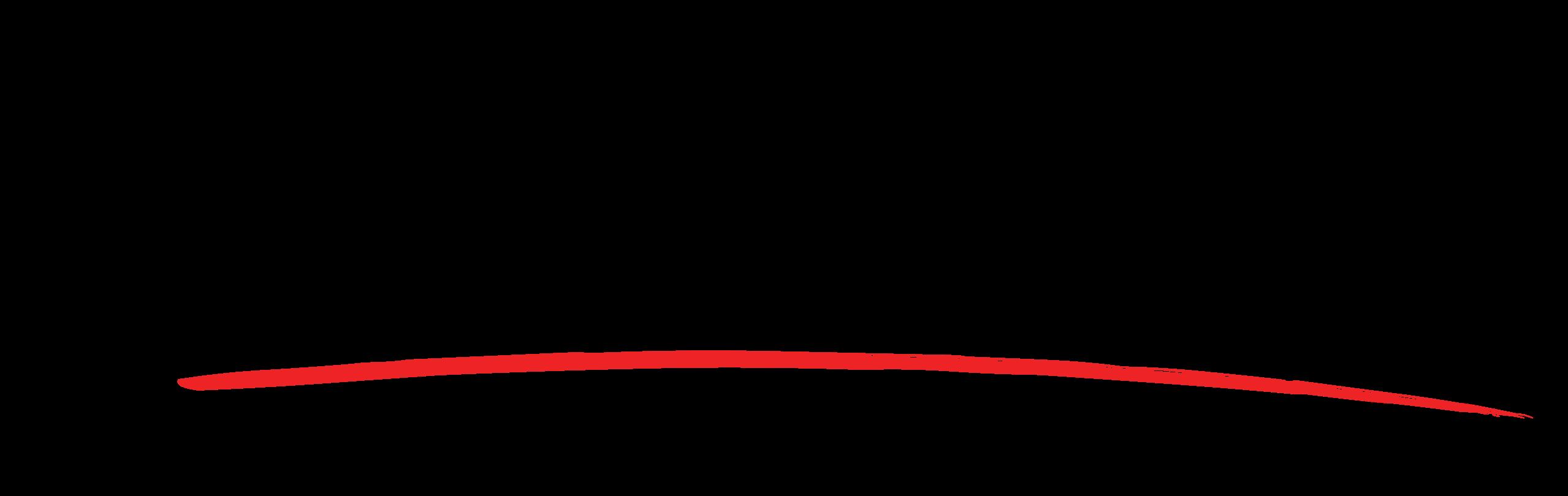 Finanzasmania logo